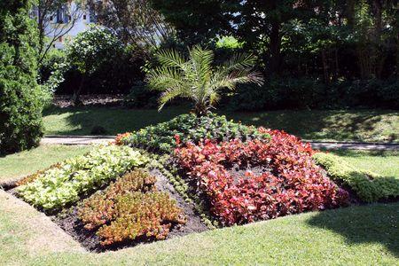 Floral arrengement in botanical garden from Cluj Napoca