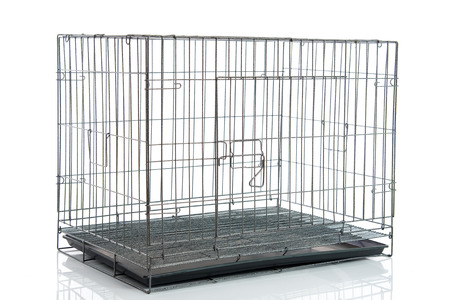 wire dog crate or animal cage on white background isolated