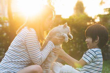 Photo pour Asian mother and her son playing with cat in the park - image libre de droit