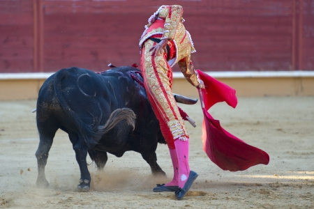 A detail of a bullfight in Spain