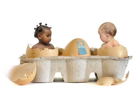 Photo pour Beautiful babies inside  eggs  isolated in white - image libre de droit