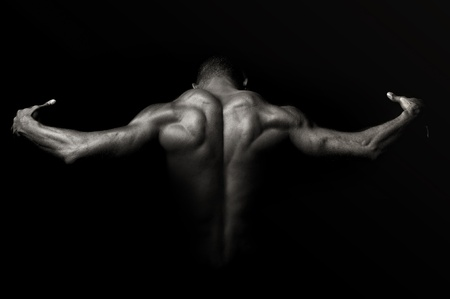 Photo for Beautiful and muscular black man's back in dark background - Royalty Free Image