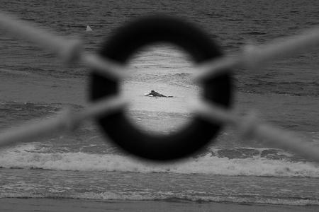 Surfista en tabla buscando olas