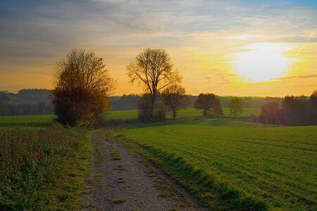 Photo pour A dirt road lies between grassy fields during the autumn sunset. Heiligenhaus / NRW / Germany - image libre de droit