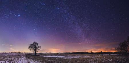 Foto de Landscape of zodiacal light with stars and a tree - Imagen libre de derechos