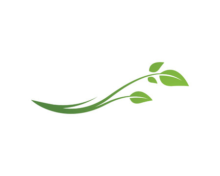 Ilustración de Eco Tree Leaf Logo Template - Imagen libre de derechos