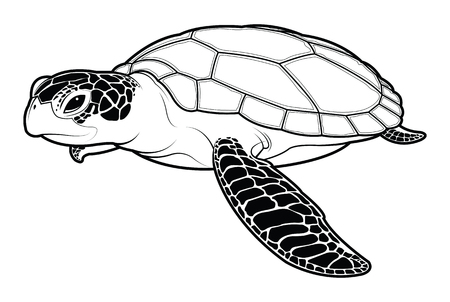Illustration pour Sea turtle animal cartoon. silhouette vector illustration. - image libre de droit