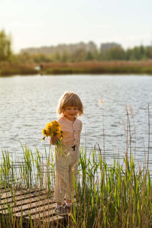 Photo pour Little boy holding bunch of yellow dandelion flowers in a park, lake or river in the background - image libre de droit