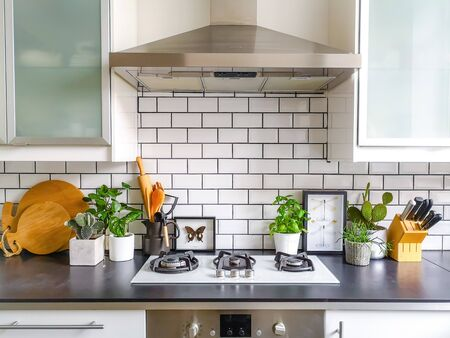 Photo pour Black and white subway tiled kitchen with numerous plants and framed taxidermy insect art - image libre de droit