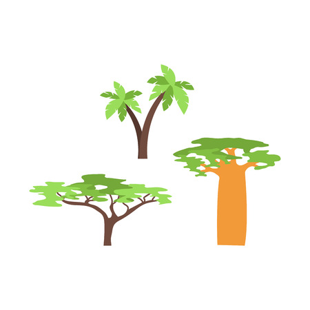 Illustration pour Old baobab tree isolated on white. Green forest madagascar vector plant. Large savanna tropical travel nature illustration. Africa natural wild trunk. - image libre de droit
