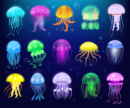 Illustration pour Jellyfish vector ocean jelly-fish or sea-jelly and underwater nettle-fish or medusae illustration set of exotic jellylike glowing medusa or fish in sea isolated on background. - image libre de droit