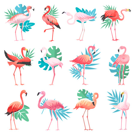 Ilustración de Flamingo vector tropical pink flamingos and exotic bird with palm leaves illustration set of fashion birdie isolated on white background. - Imagen libre de derechos