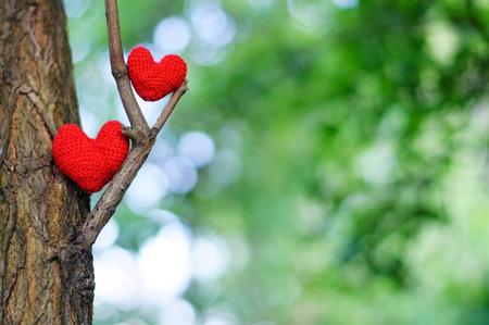Foto de Two red hearts. valentines day postcard, I love you, - Imagen libre de derechos