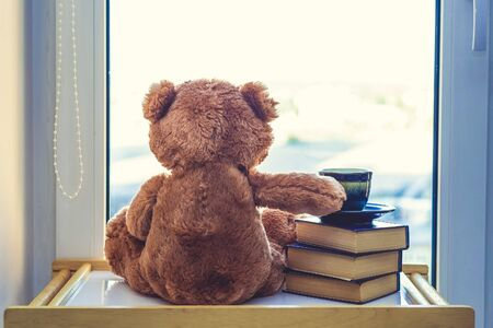 Photo pour Sweet Teddy bear looking in windiws with cup of coffee or tea on stack of books.. At a morning sun light. Good morning concept. Romantic gift. back view. - image libre de droit