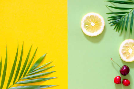 Foto de Bright colorful background with exotic painted tropical palm leaves and fruit. - Imagen libre de derechos