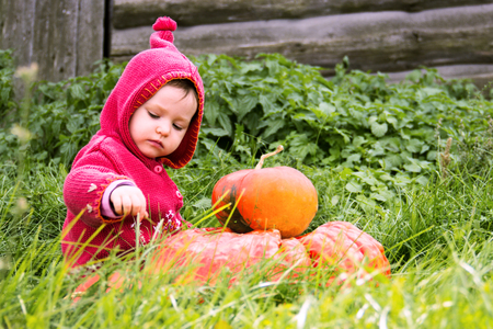 a small serious child in a purple gnome suit sits on a floor of a turn with two pumpkins in the grass and looks down. There is a free place for the inscription heluin. Farm, wooden wall