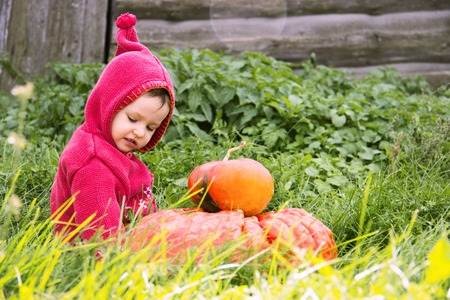 a small serious child in a purple gnome suit sits on a floor of a turn with two pumpkins in the grass and looks down. There is a copy space for the inscription heluin. Farm, wooden wall