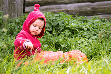 a small serious child in a purple gnome suit sits on a floor of a turn with pumpkin in the grass and looks down. There is a copy space for the inscription heluin. Farm, wooden wall
