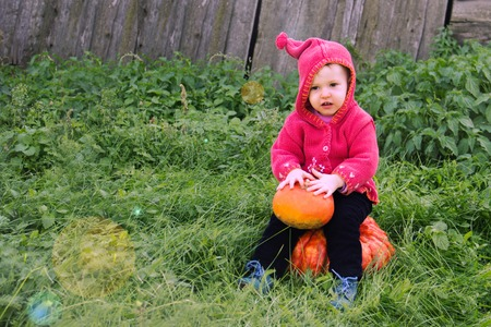 a small serious child in a purple gnome suit sits on a floor of a turn with two pumpkins in the grass and looks down. There is a copy space for the inscription halloween. Farm, wooden wall