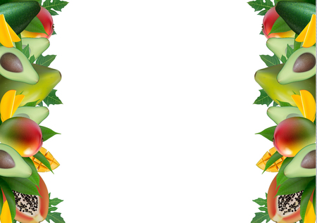 Fruit creative template layout made of avocado, mango, papaya and leaves. Food concept background. Space for text. Vector Illustration.