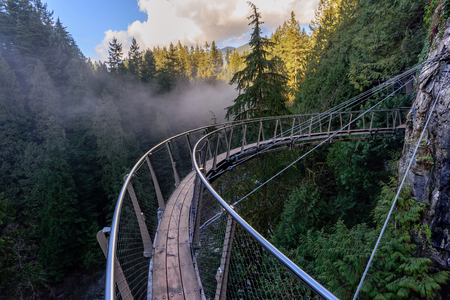 Photo pour a view from above from the suspension bridge on rough streams of a mountain river among green forests white fog and rocky mountains in a sunny, summer day - image libre de droit