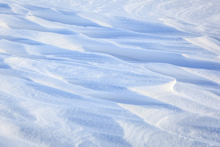 natural winter background of white  and  blue clean snowy surface