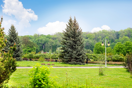 Foto de Beautiful green park Theophania. - Imagen libre de derechos