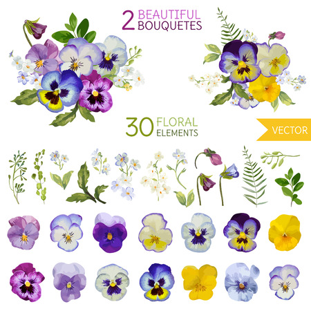 Vintage Pansy Flowers and Leaves - in Watercolor Style - vectorのイラスト素材