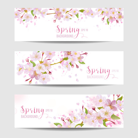 Illustration pour Spring Flower Banner Set - Cherry Blossom Tree - in vector - image libre de droit