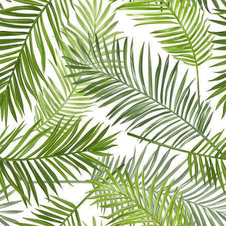 Illustration pour Seamless Tropical Palm Leaves Background - for design, scrapbook - in vector - image libre de droit