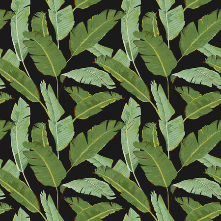 Illustration pour Seamless Pattern. Tropical Palm Leaves Background. Banana Leaves. Vector Background. - image libre de droit