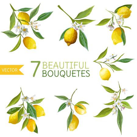 Photo pour Vintage Lemons, Flowers and Leaves. Lemon Bouquetes. Watercolor Style Lemons. Vector Fruit Background. - image libre de droit
