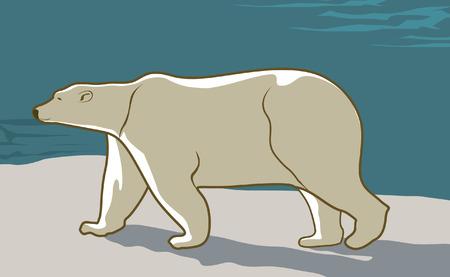 A polar bear walking on snow