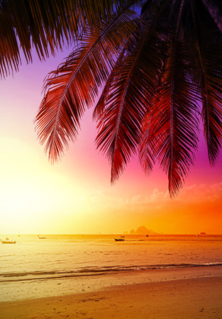 Photo for Beautiful sunset over beach, summer holidays background. - Royalty Free Image