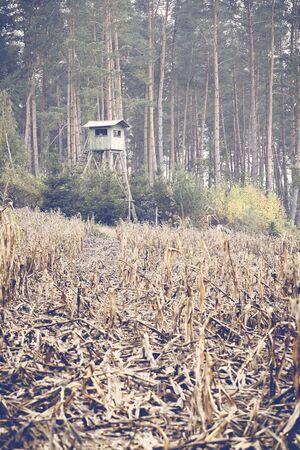 Maciejbledowski191000132