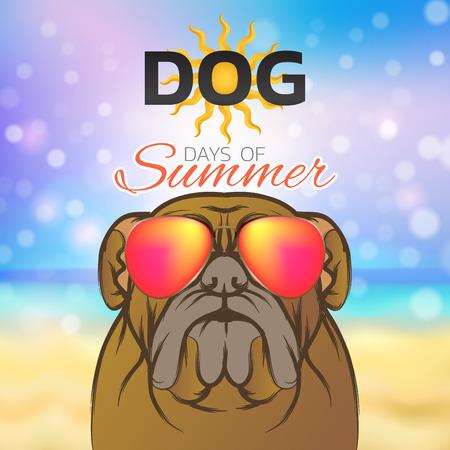 Dog days of summer colorful design, vector illustration