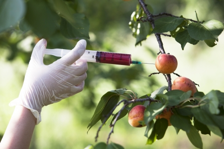 non-organic fruit
