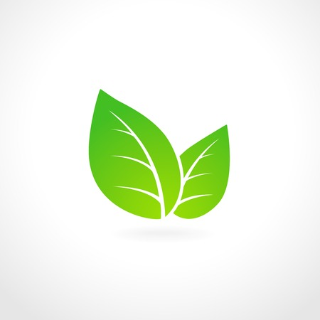 Green leaf ecology emblem isolated vector illustrationのイラスト素材