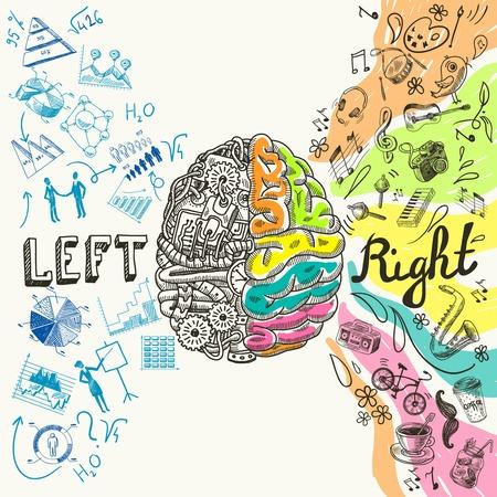Illustration pour Brain left analytical and right creative hemispheres sketch concept vector illustration - image libre de droit