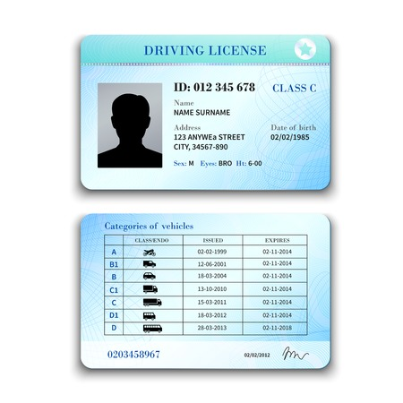 Realistic international plastic driver licence back and front template isolated vector illustration