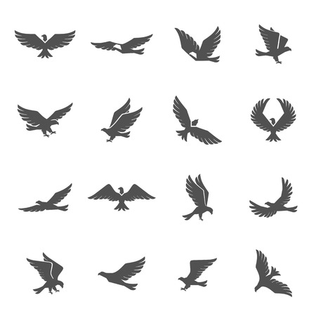Different eagle birds spreding their wings and flying icons set isolated vector illustration