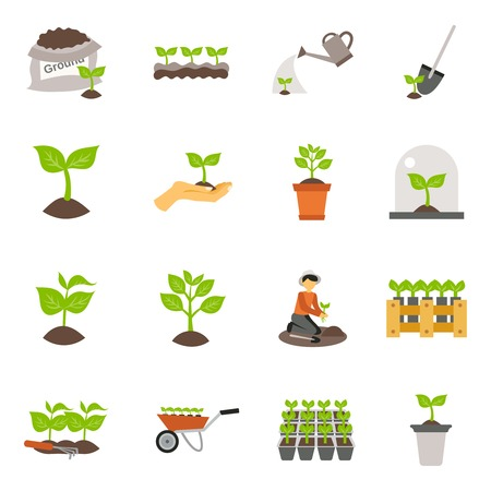 Illustration for Flowers and plants seedling process flat icons set isolated vector illustration - Royalty Free Image