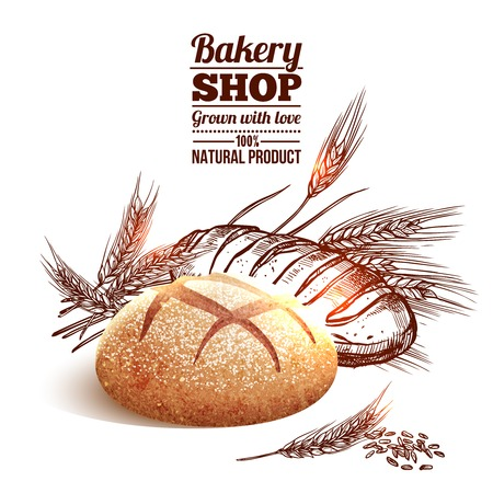 Illustration pour Bakery concept with sketch bread and hand drawn wheat on background vector illustration - image libre de droit