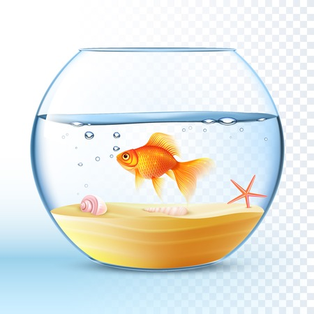 Illustration pour Goldfish swimming in round fishbowl with shell and starfish on the sand bottom poster abstract vector illustration - image libre de droit