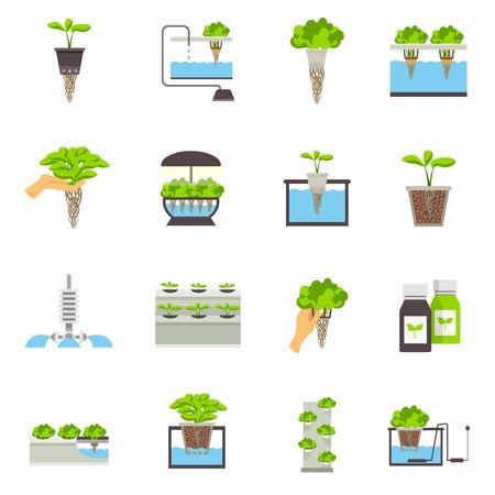 Illustration pour Set of color flat icons depicting elements of hydroponic system vector illustration - image libre de droit
