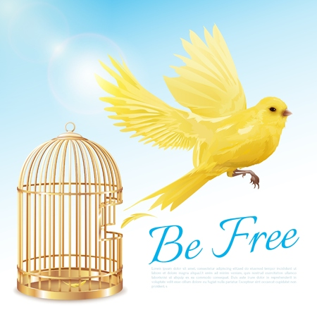 Illustration pour Poster with canary flying from open golden cage and getting freedom on blue white background vector illustration - image libre de droit