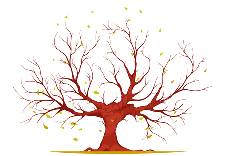 Illustration pour Huge tree with large trunk, bare branches and roots, falling leaves isolated on white background vector illustration - image libre de droit