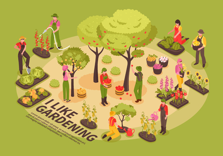 Illustration pour Gardening infographic elements composition isometric poster with trees flowers  planting vegetables watering cabbage pumpkin harvesting vector illustration - image libre de droit
