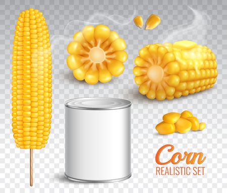 Illustration pour Realistic corn in cob, grains, baked buttered maize, canned product, set on transparent background isolated vector illustration - image libre de droit