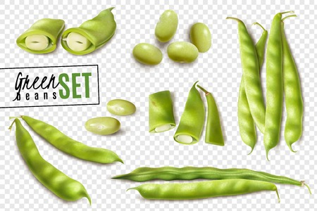 Ilustración de Fresh farmer market organic green beans realistic set with whole and cut pods transparent background vector illustration - Imagen libre de derechos